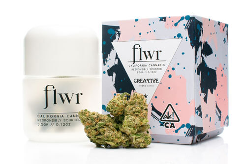 flwr_creative